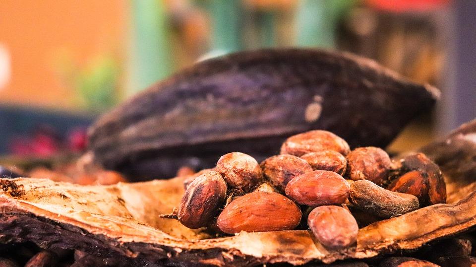 cacao-3995995_960_720